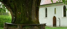 Podružnična cerkev sv. Mohorja in Fortunata